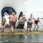 Fearless Polar Bear Plunge
